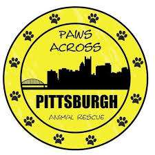 paws across pittsvurgh animal rescue logo
